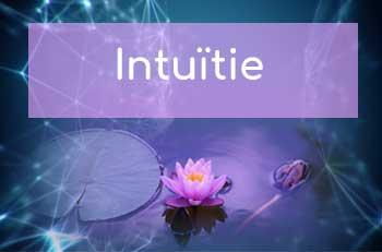 hoofdonderwerp Intuitie