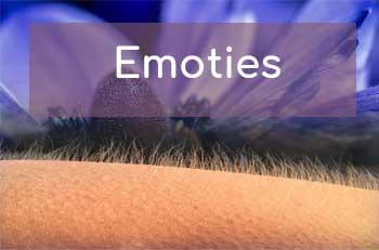 hoofdonderwerp Emoties