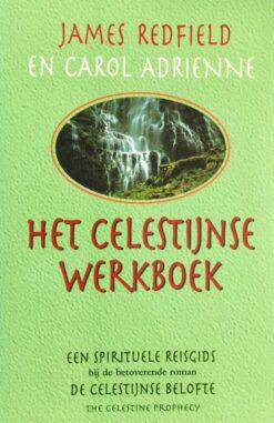 Het celestijnse werkboek front